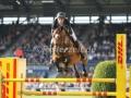 IMG_2978 Gregory Wathelet u. Indorado van t Heike (Aachen 2016)