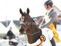 IMG_1820 Philipp Weishaupts Chico 784 (Hagen 2016)