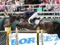IMG_9240 Johannes Ehning u. Quintana Roo (Noerten-Hardenberg 2016)