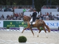 IMG_3122 Michael Eilberg u. Woodlander Farouche (Aachen 2016)