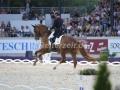 IMG_3141 Michael Eilberg u. Woodlander Farouche (Aachen 2016)