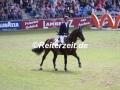 IMG_8951 Frank Schuttert u. Chiantis Champion (Aachen 2017)