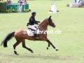 IMG_9080 Eric Lamaze u. Fine Lady 5 (Aachen 2017)