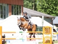 IMG_3916 Angelos Touloupis u. Coco Chanell 15 (Breitenburg 2017)