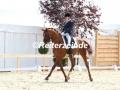 IMG_4537 Paula de Boer u. Le Rouge 7 (Delingsdorf 2017)