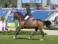 IMG_5093 Jeroen Dubbeldam u. Classic Man V (EM Aachen 2015)