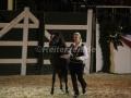 IMG_1033 Kerstin Brein u. ihre 5 kleineb Ponys - Freiheitsdressur (Holsteiner Gala Abend 2014)