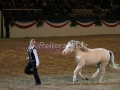 IMG_1048 Kerstin Brein u. ihre 5 kleinen Ponys - Freiheitsdressur (Holsteiner Gala Abend 2014)