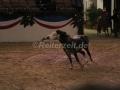 IMG_1054 Kerstin Brein u. ihre 5 kleinen Ponys - Freiheitsdressur (Holsteiner Gala Abend 2014)