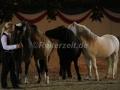 IMG_1064 Kerstin Brein u. ihre 5 kleinen Ponys - Freiheitsdressur (Holsteiner Gala Abend 2014)