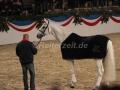 IMG_1101 Corrado - 29 Jahre alt (Holsteiner Gala Abend 2014)