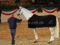 IMG_1108 Corrado - 29 Jahre alt (Holsteiner Gala Abend 2014)