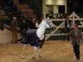 IMG_1112 Corradina Verabschiedung (Holsteiner Gala Abend 2014)