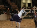 IMG_1113 Corradina Verabschiedung (Holsteiner Gala Abend 2014)