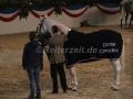 IMG_1115 Corradina Verabschiedung (Holsteiner Gala Abend 2014)