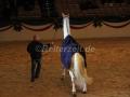 IMG_1133 Corrado - 29 Jahre alt (Holsteiner Gala Abend 2014)