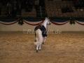 IMG_1135 Corrado - 29 Jahre alt (Holsteiner Gala Abend 2014)