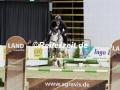IMG_1491 Felix Haßmann u. Horse Gym´s Landino (Oldenburg 2017)