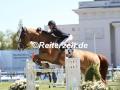 IMG_4317 Elisa Strubbe u. Gladiator vant Paradijs (Redefin 2018)