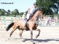 IMG_0945 Andreas Ripke u. Coranos (Schuelp 2018)