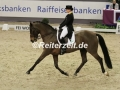 IMG_6812 Isabell Werth u. Don Johnson FRH (Neumuenster 2017)
