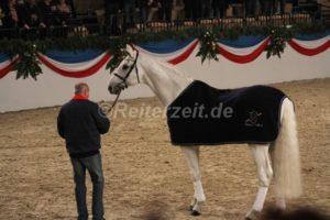 IMG_1101 Corrado 29 Jahre alt (Holsteiner Gala Abend 2014)